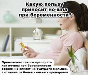 Но-шпа при тонусе матки во время беременности