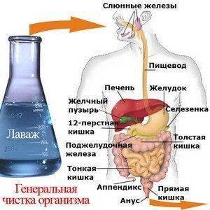 Что следует знать про очищение кишечника?