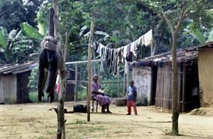 Лихорадка Эбола: причины, симптомы и лечение этой опасной болезни