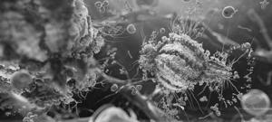 СПИД (ВИЧ-инфекция): причины, симптомы и лечение