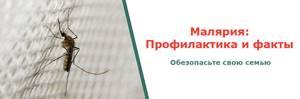 Малярия (malaria)